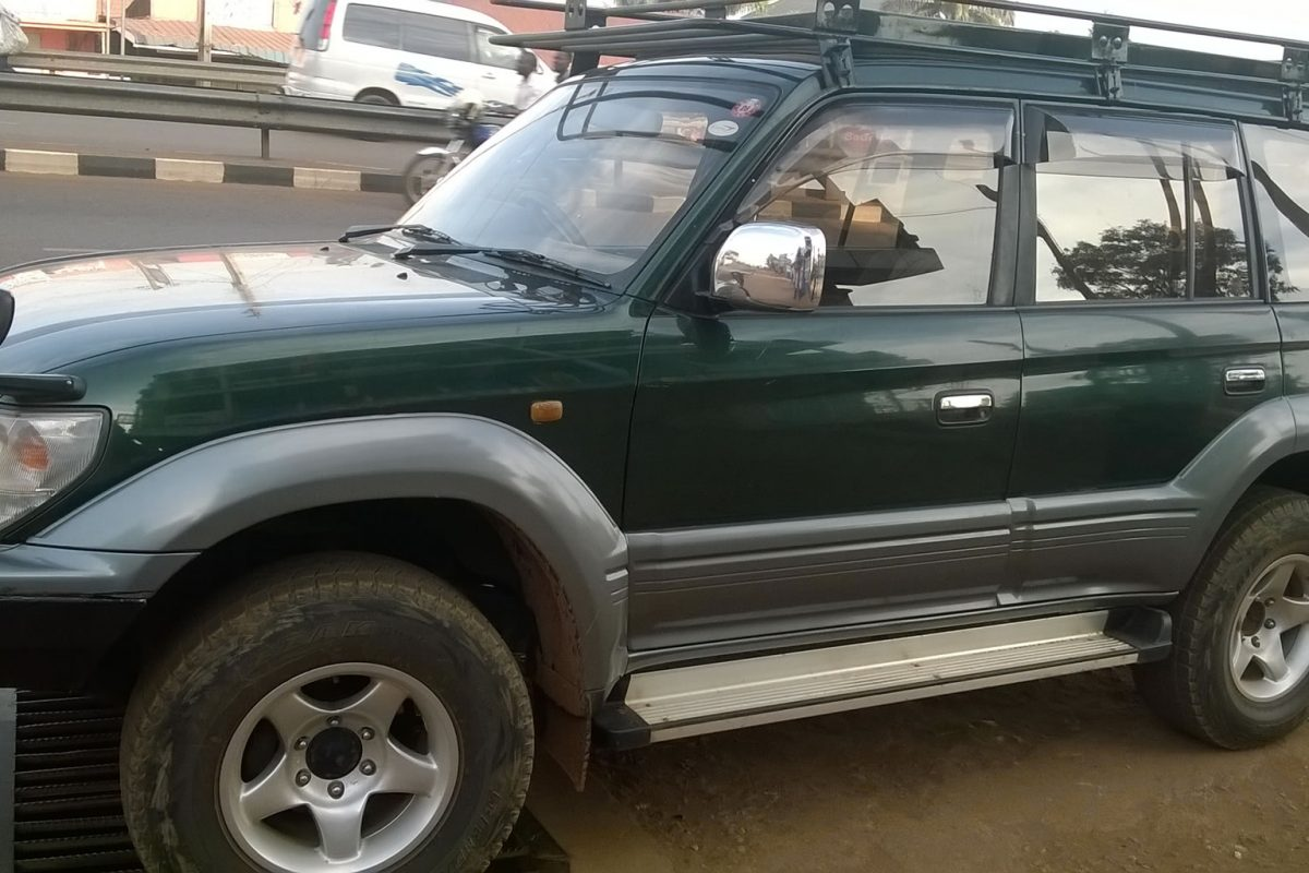 What Do I Require to Take Self Drive Safaris in East Africa